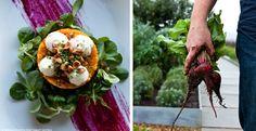 Healthy meals straight from the garden, courtesy Jamie Busch