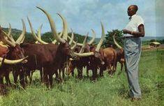 Photos anciennes du Rwanda | Actualité/information et documentation socio-politique sur le Rwanda | musabyimana.net