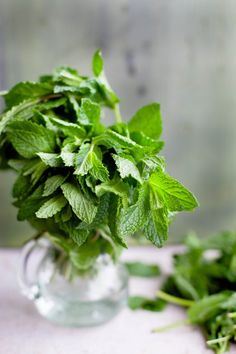 Mint | Sinfully Spicy