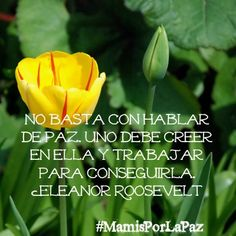 No basta con hablar de paz. Uno debe creer en ella y trabajar para conseguirla. | It is not enough to talk about peace. One has to believe in it and work to achieve it. ~Eleanor Roosevelt #MamisPorLaPaz #25Días #LaFamiliaCool #25Days #Peace #MamiCoolsCorner Delete Comment