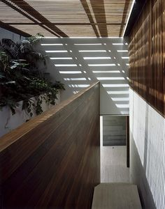 House La Punta, Mexico, by Central De Arquitectura.