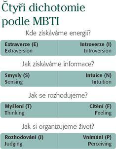 Výsledek obrázku pro mbti typologie
