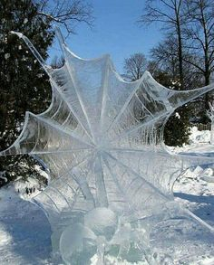 Funny pictures about Frozen Spider Web. Oh, and cool pics about Frozen Spider Web. Also, Frozen Spider Web photos. Image Nature, All Nature, Science And Nature, Amazing Nature, Cool Pictures, Beautiful Pictures, Random Pictures, Funny Pictures, Amazing Photos
