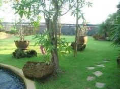 Resultado de imagem para decoracion terrazas campestres