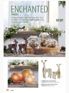 Partylite Fall / Holiday 2015 Catalog