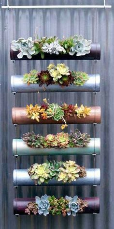 diy garden ideas Vertical gardens are a great way to create micro gardens either indoors or out, and can be used to grow all sorts of plants. Here are the 11 Best Ideas. Succulents Garden, Planting Flowers, Hanging Succulents, Succulent Planters, Succulent Display, Succulent Ideas, Diy Planters, Fence Planters, Succulent Gardening
