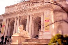new york stories: the ramblings on the last day by twiggs photography