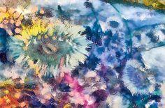 Sea Anemone Garden Mixed Media Digital Art by Priya Ghose Fine Art Prints For Sale #art #tidepools #priyaghose