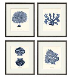 Korallen Meer Kunstdruck nautische Kunst Druck Satz von 4 antike Wand Kunst viktorianischen Kunst Ocean Kunst print Strand Home Dekor Wandkunst Meer Kunstdruck