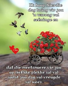 Good Morning Messages, Good Morning Greetings, Good Morning Wishes, Good Morning Quotes, Lekker Dag, Afrikaanse Quotes, Goeie Nag, Goeie More, Morning Blessings