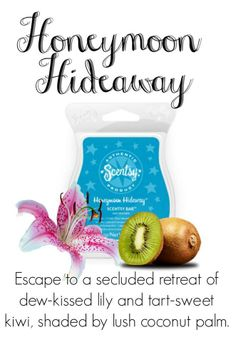Honeymoon Hideaway Scentsy Bar Like me on Facebook at Facebook.com/scentsybhuff or visit my website at bethanyhuff.scentsy.us
