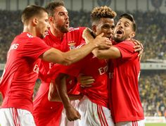 Benfica empata frente ao Fenerbahçe e joga playoff Benfica Wallpaper, Play, Couple Photos, Couples, Club, Love Of My Life, The World, Photos, Couple Pics