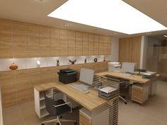 design of office 80 m2 (интериорен дизайн на офис 80 м2)