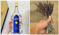 V posledných dňoch zachvátil Slovensko strach z nebezpečného vírusu. Bohužiaľ regále v obchodoch obsahujúce dezinfekciu rúk a domácnosti zívajú prázdnotou. Poradíme vám jednoduchý recept, ktorý vám pomôže cítiť sa bezpečnejšie! Jednoduchá s.o.s. dezinfekcia na ruky Na dezinfekciu na ruky potrebujete alkohol, prevarenú vodu a esenciálny olej. Olej treba voliť vždy taký, ktorý má antiseptické účinky.... Vodka Bottle, Water Bottle, Smart Water, Kefir, Herbs, Drinks, Smoothie, Liquor, Drinking
