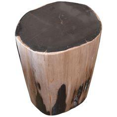 Petrified Wood Side Table 2