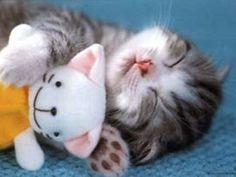 AHH!!! It's so cute!!!