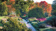 lognwood+flower+gardens | ... du Pont's 200-yard long Flower Garden Walk at Longwood gardens