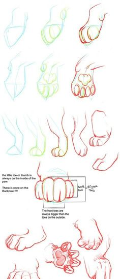 Cat paw tutorial