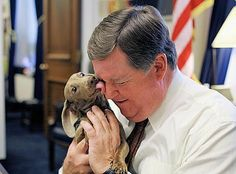 The Long and Short of it All: A Dachshund Dog News Magazine: Rep. Ken Calvert's 'Cali' Wins Award in HSUS Photo Contest