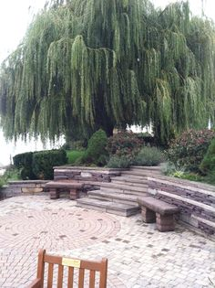 A Peaceful Sitting Garden Under A Weeping Willow Tree
