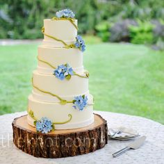 A green icing vine wrapped around Amy and Andrew's wedding cake and was dotted with clusters of blue flowers.