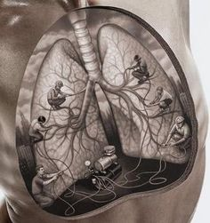 Image result for stylised drawings of organs