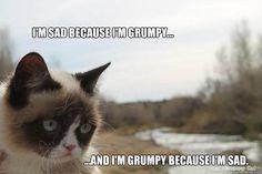 the inner grump- aww