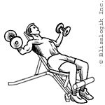 Beast Gym: Dumbbell Exercises for the Chest Dumbbell Chest Workout, Chest Workouts, Dumbbell Exercises, Incline Bench, Chest Muscles, Bench Press, Fitness, Beast, Gym