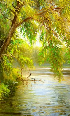 Shop Trees over water photo print created by WImages. Personalize it with photos & text or purchase as is! Beautiful Gif, Beautiful World, Beautiful Places, Beautiful Pictures, Beautiful Scenery, Gif Bonito, Theme Nature, Photo Print, Nature Gif