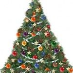 Infographic: Christmas Tree Facts