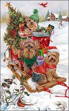 Donna Race - A Doggie Merry Christmas