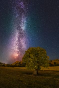 ~~Rising Up | lone tree and the Milky Way | by Ole Henrik Skjelstad~~