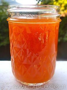 How To Make Jam Without Pectin (2)
