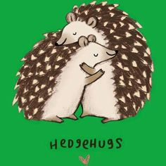 ♡ Hedgehog Love ♡