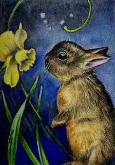 Cute Bunny and Flowers Art Melody Lea Lamb ACEO by MelodyLeaLamb, $6.25