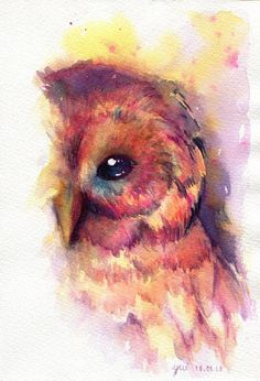 Water-colored Owl