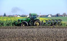 Mezőgazdaság - Létavértes - Ökológiai másodvetés