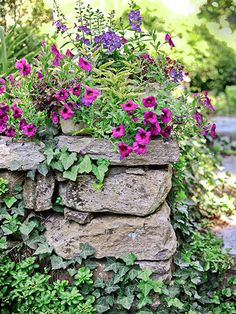 A rustic stacked-stone wall provides a perfect shelf for a rectangular planter overflowing with Calitunia, coleus, and angelonia.