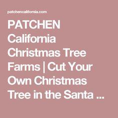Crest Ranch Christmas Tree Farm - Santa Cruz, California. Bay Area ...