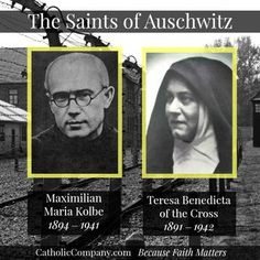 The Saints of Auschwitz: St Maximilian Kolbe and St Teresa Benedicta of the Cross (Edith Stein) Catholic Saints, Roman Catholic, Catholic Doctrine, Patron Saints, St Maximilian, World Youth Day, Catholic Company, Religion, Saint Quotes