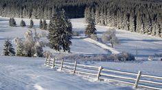 Zimski pejzaži - Page 7