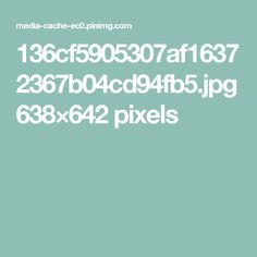 136cf5905307af16372367b04cd94fb5.jpg 638×642 pixels