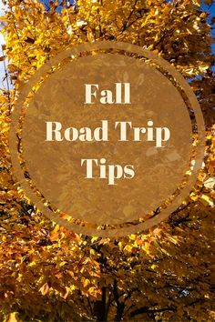 Tips for fall road trips including when to go, where to go, what to do and what to bring on a fall scenic driving tour.
