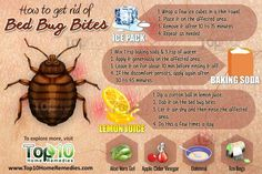 How to get rid of bed bug bites. #bedbugs