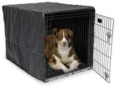 The Basics of Dog Training Using a Crate - Dog Pet Care Corner - PetSolutions