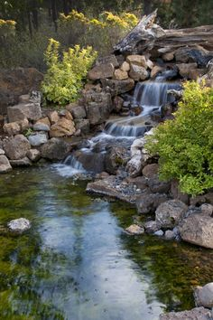 A more natural garden waterfall with a pool full of algae covered boulders and rocks. Shards of fallen trees lay by the side of the falls, bleached white in the sun.