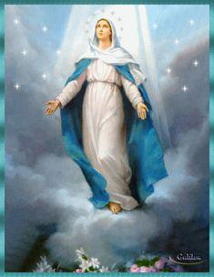 8 de diciembre día de la Inmaculada Concepción imagen gif