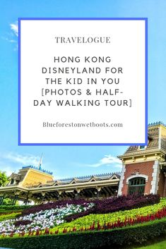 Hong Kong Disneyland is on top of every tourist's mind upon setting foot in Hong Kong. Read more about the theme park in this article. Disneyland Tickets, Hong Kong Disneyland, Disneyland Resort, Buy Tickets, Disneyland Opening, Disney Souvenirs, Blue Forest, Neuschwanstein Castle
