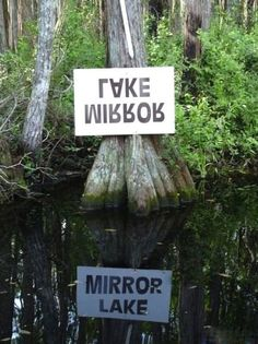 #funny #sign