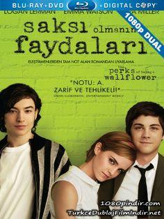 Saksi Olmanin Faydalari The Perks Of Being A Wallflower 2012 1080p Dual Turkce Dublaj Bluray 1080p Cover Movie Poster Film Afisleri - http://1080pindir.com/Saksi-Olmanin-Faydalari-the-Perks-Of-Being-A-Wallflower-2012-1080p-Dual-Turkce-Dublaj-indir-8188